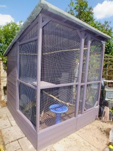 Our pigeon aviary